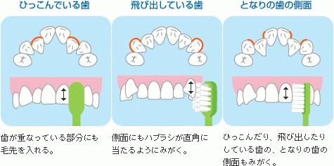 image.jpg2/6