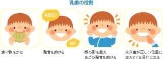 image.jpg3/7