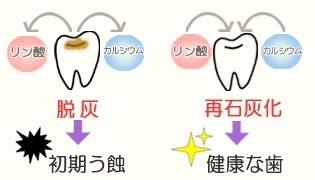 image.jpg12/16